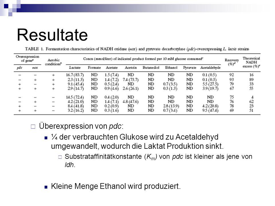 Resultate Überexpression von pdc: