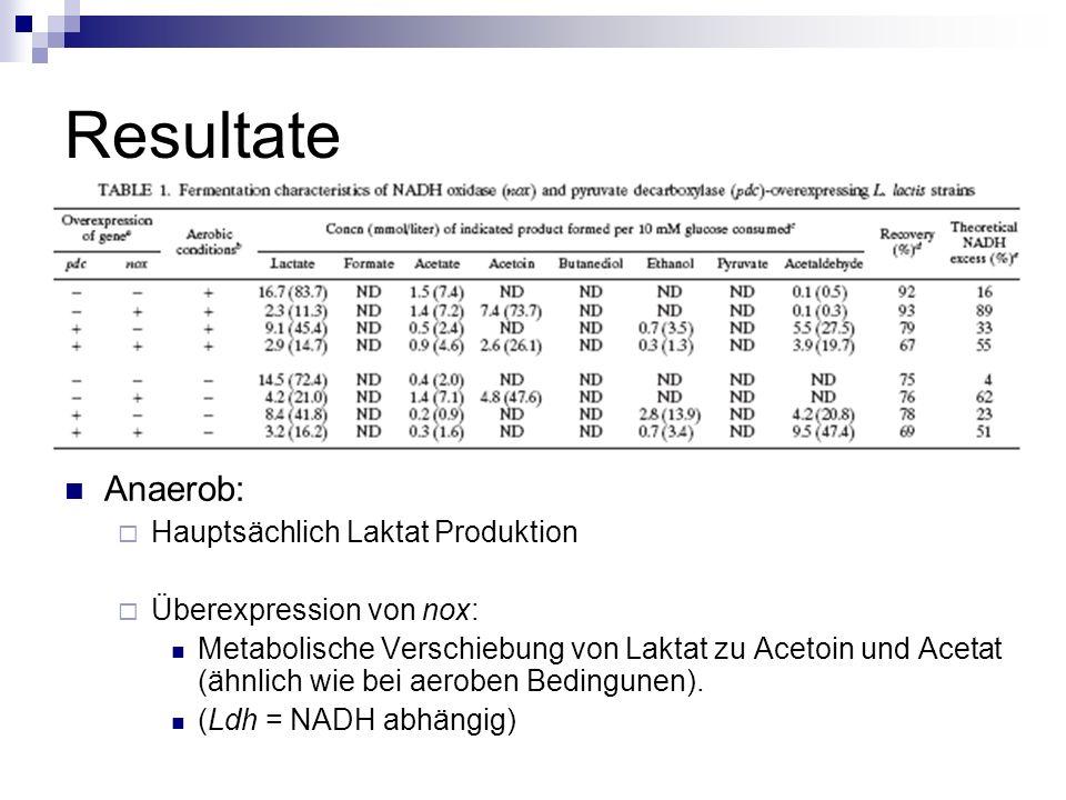 Resultate Anaerob: Hauptsächlich Laktat Produktion