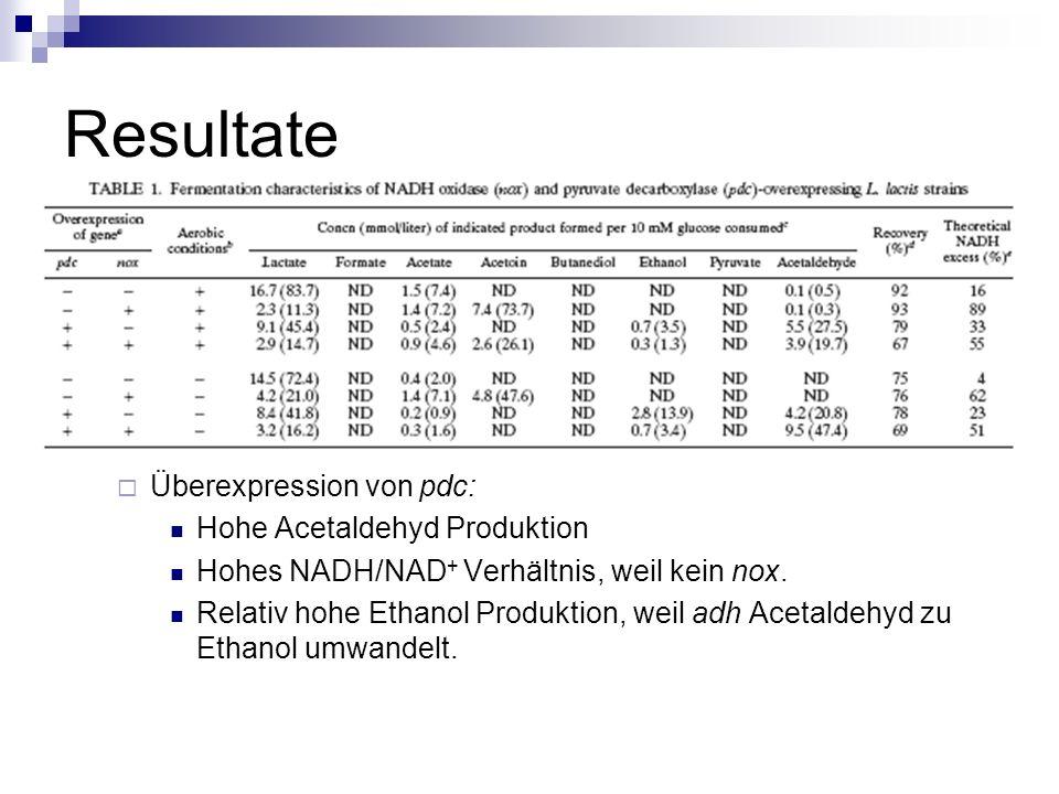 Resultate Überexpression von pdc: Hohe Acetaldehyd Produktion