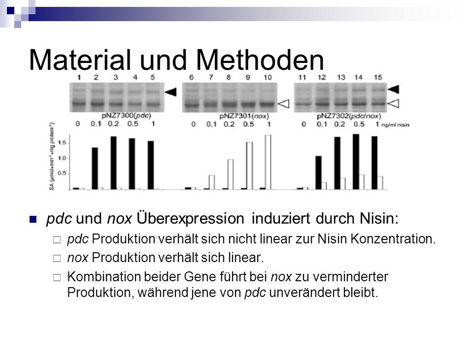 Material und Methoden pdc und nox Überexpression induziert durch Nisin: pdc Produktion verhält sich nicht linear zur Nisin Konzentration.