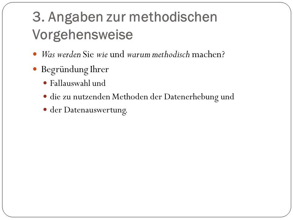3. Angaben zur methodischen Vorgehensweise