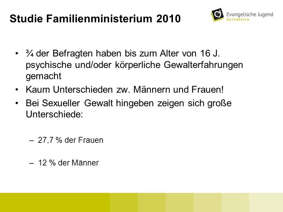 Studie Familienministerium 2010