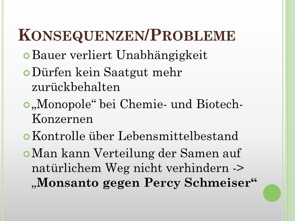 Konsequenzen/Probleme