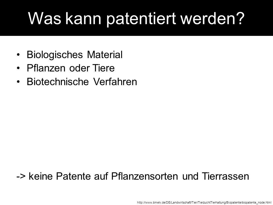 Was kann patentiert werden