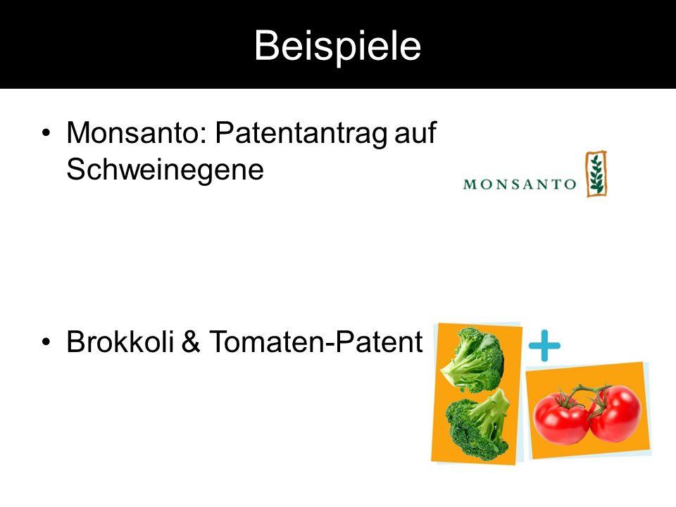 Beispiele Monsanto: Patentantrag auf Schweinegene