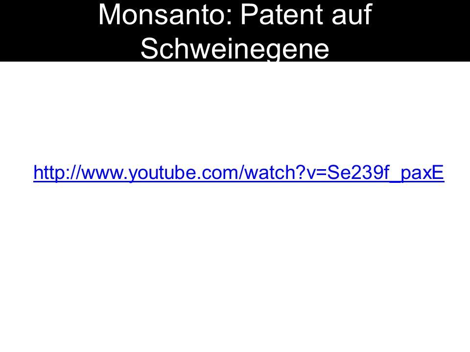 Monsanto: Patent auf Schweinegene