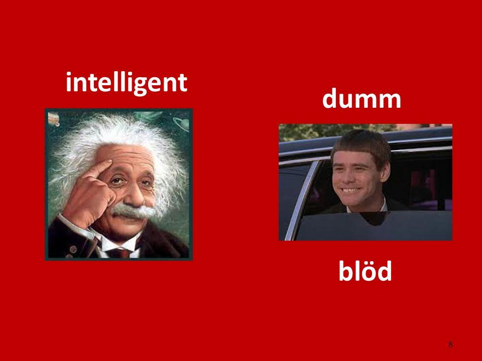 intelligent dumm blöd
