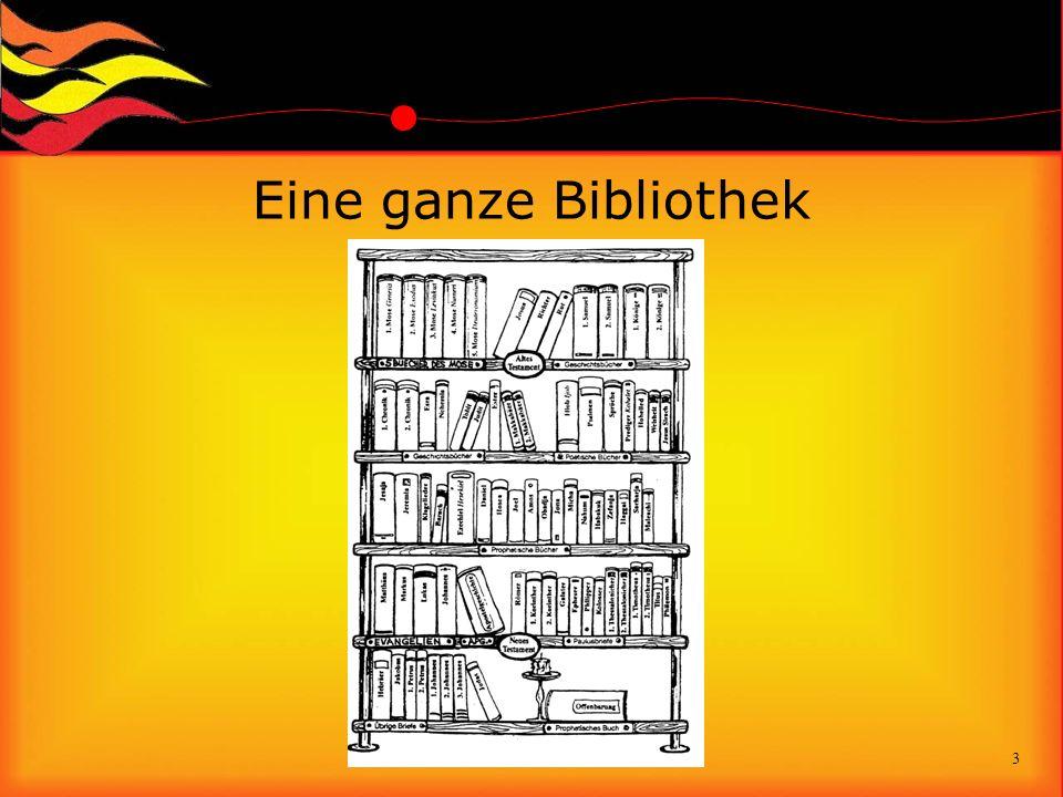 Eine ganze Bibliothek 3