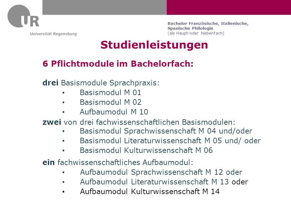 Studienleistungen 6 Pflichtmodule im Bachelorfach: