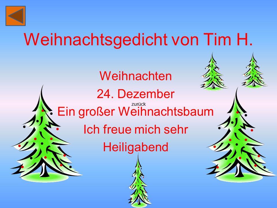 Weihnachtsgedicht von Tim H.