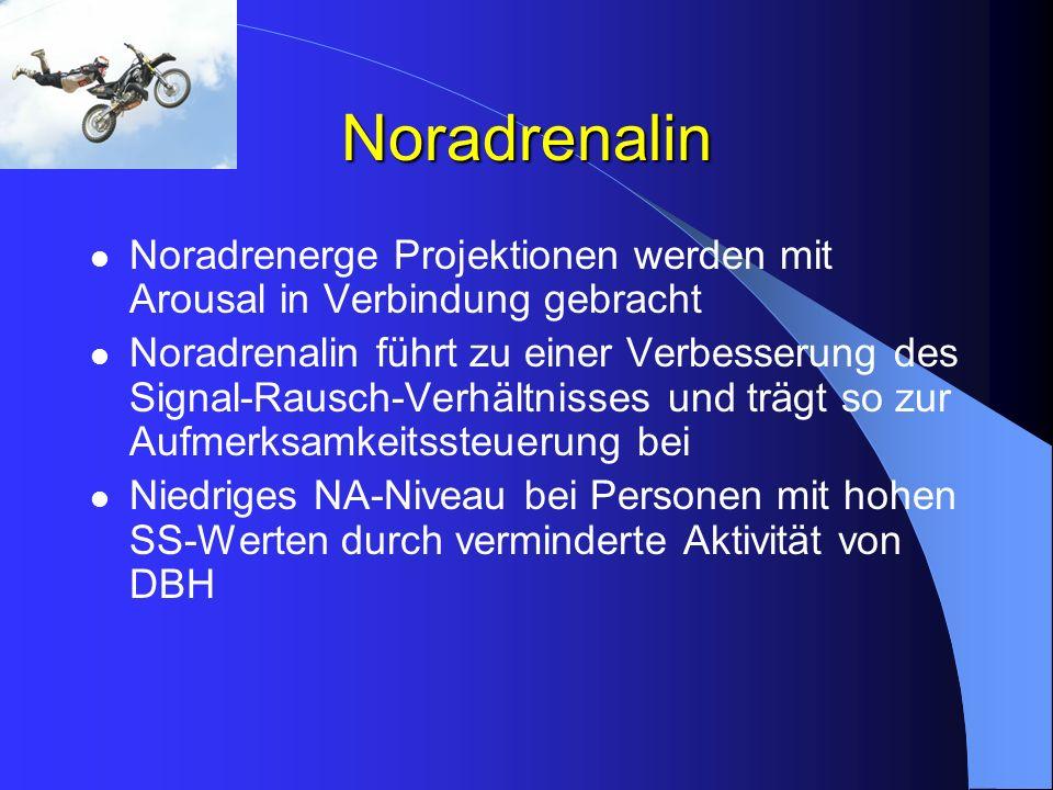 Noradrenalin Noradrenerge Projektionen werden mit Arousal in Verbindung gebracht.