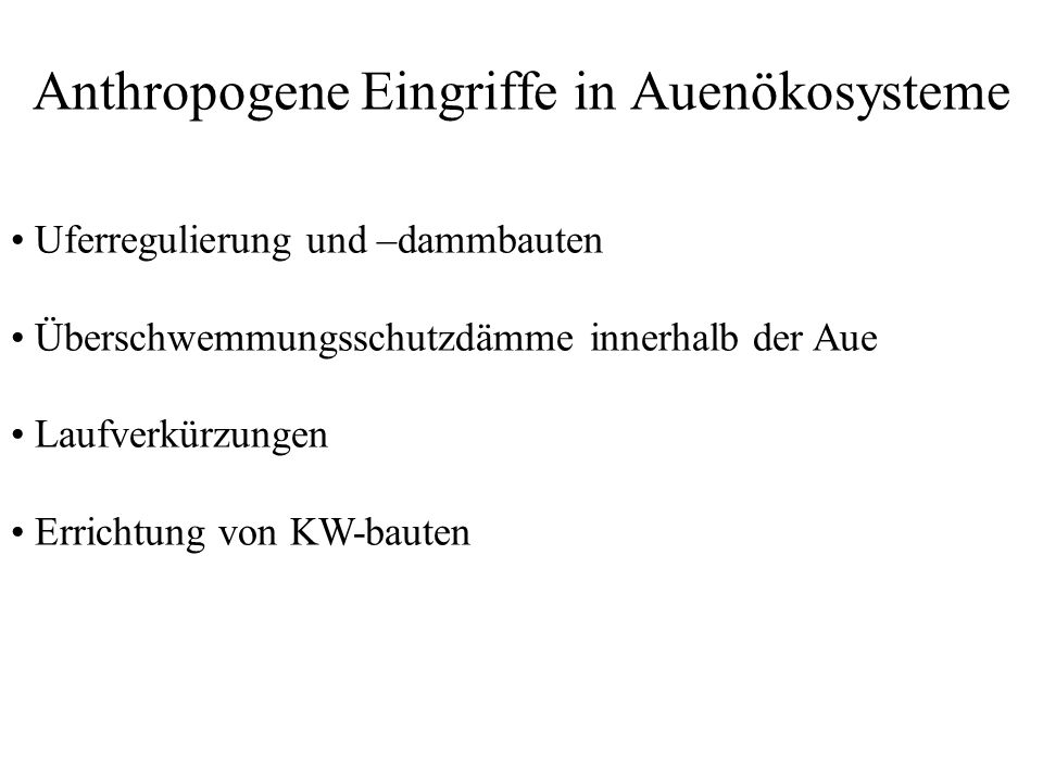 Anthropogene Eingriffe in Auenökosysteme