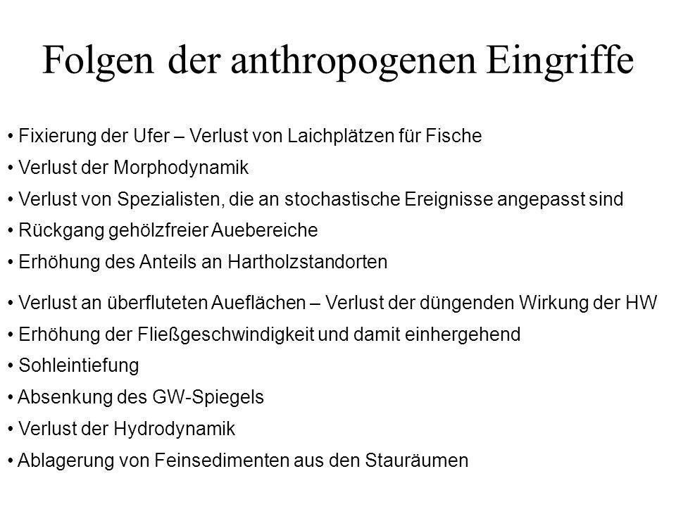 Folgen der anthropogenen Eingriffe