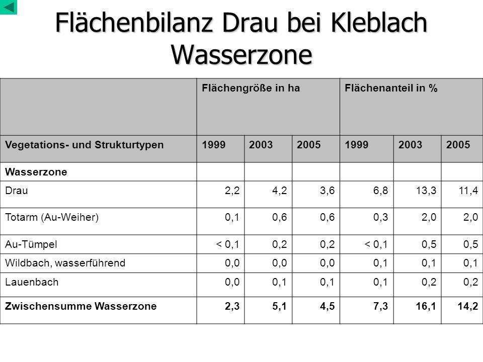 Flächenbilanz Drau bei Kleblach Wasserzone