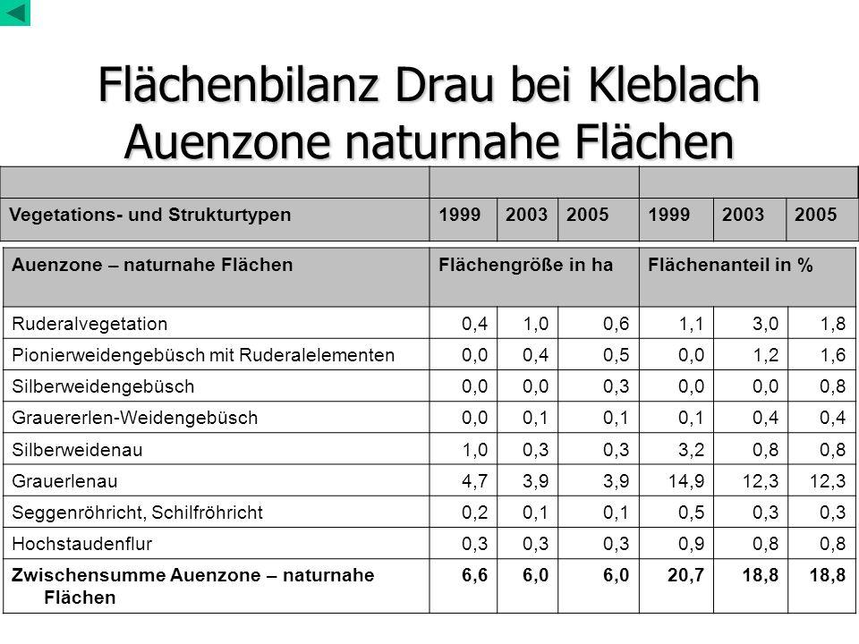 Flächenbilanz Drau bei Kleblach Auenzone naturnahe Flächen