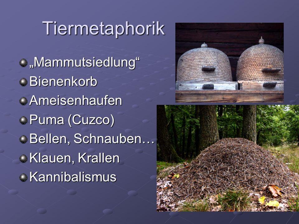 "Tiermetaphorik ""Mammutsiedlung Bienenkorb Ameisenhaufen Puma (Cuzco)"