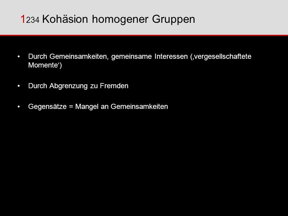 1234 Kohäsion homogener Gruppen