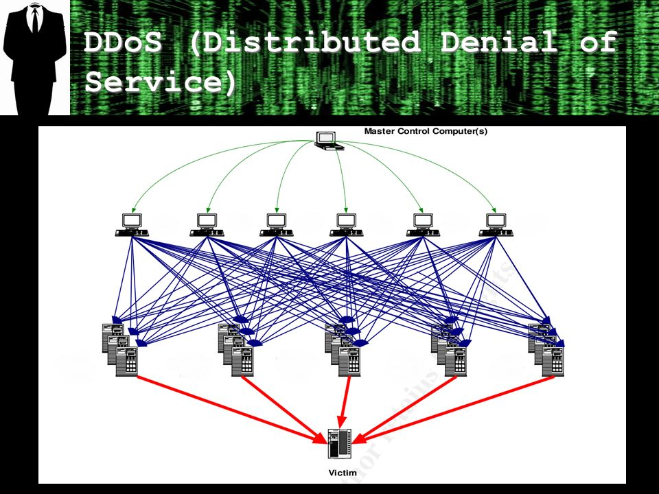 DDoS (Distributed Denial of Service)