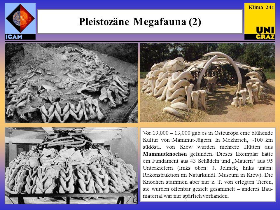 Pleistozäne Megafauna (2)
