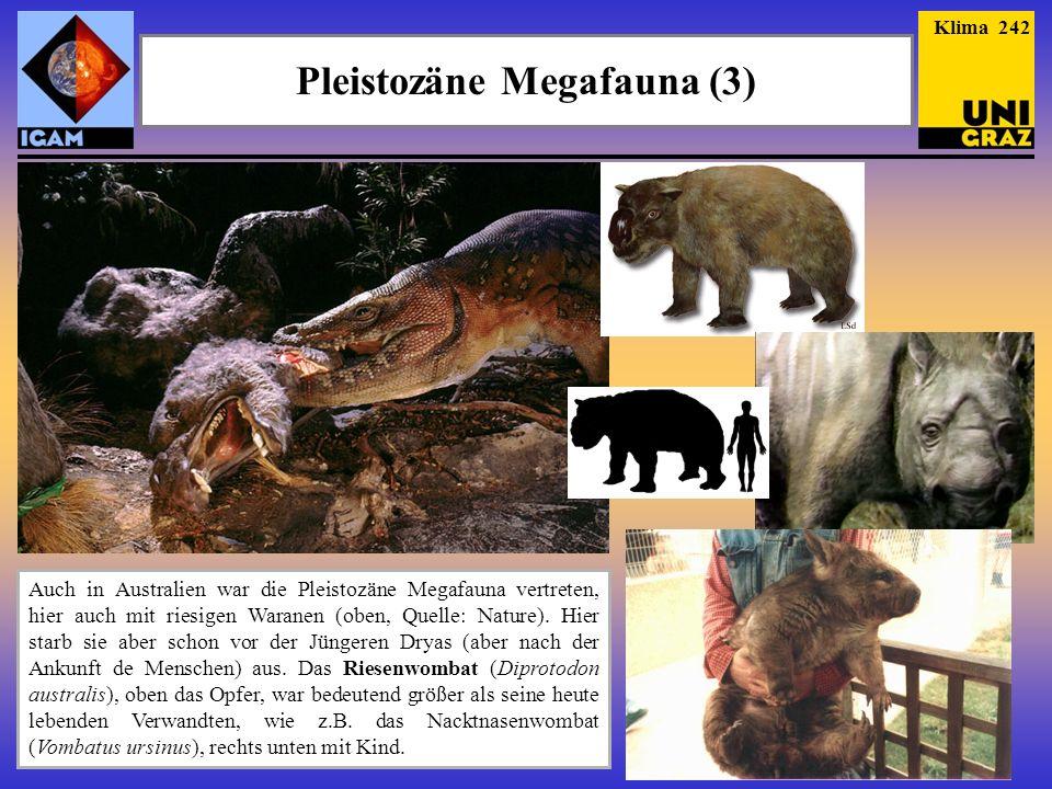 Pleistozäne Megafauna (3)