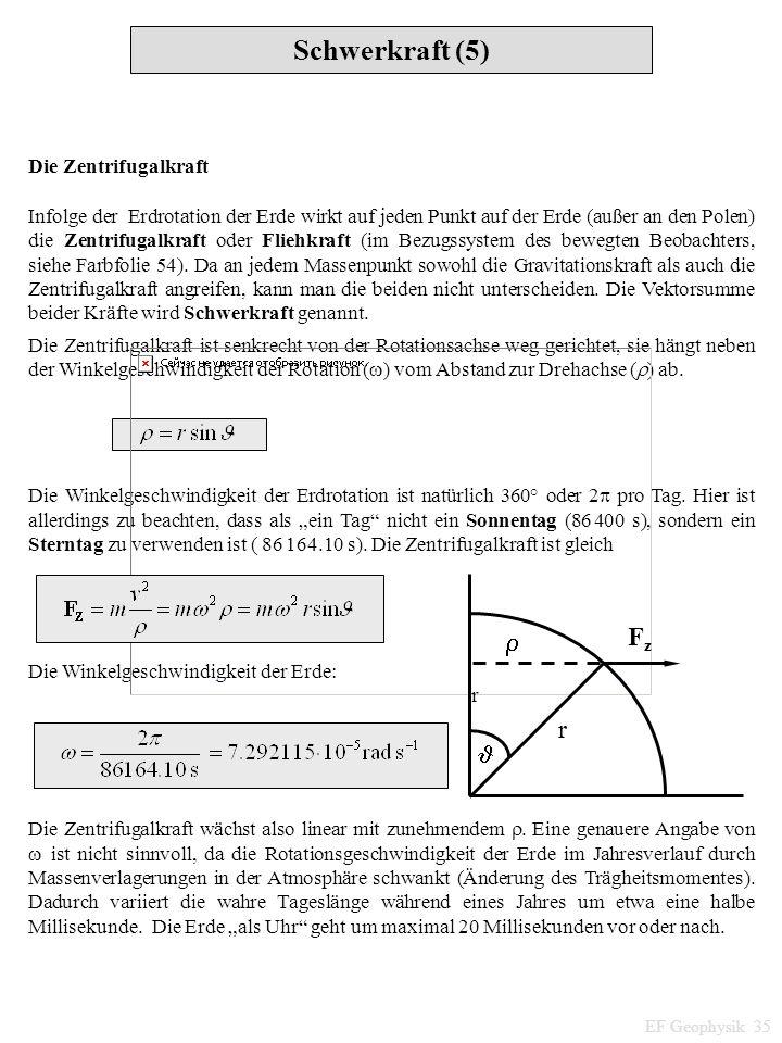 Schwerkraft (5) Fz   Die Zentrifugalkraft