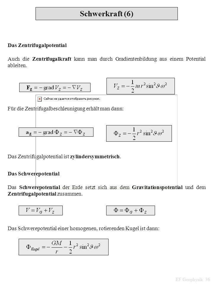 Schwerkraft (6) Das Zentrifugalpotential