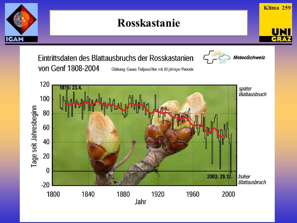 Klima 259 Rosskastanie