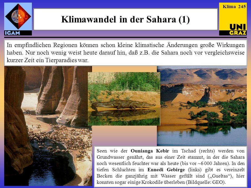 Klimawandel in der Sahara (1)