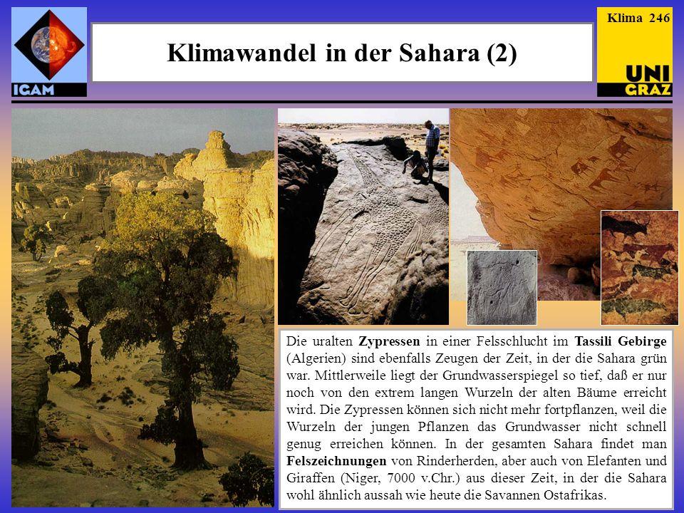Klimawandel in der Sahara (2)