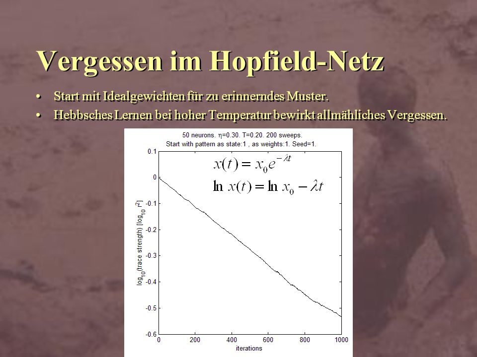 Vergessen im Hopfield-Netz