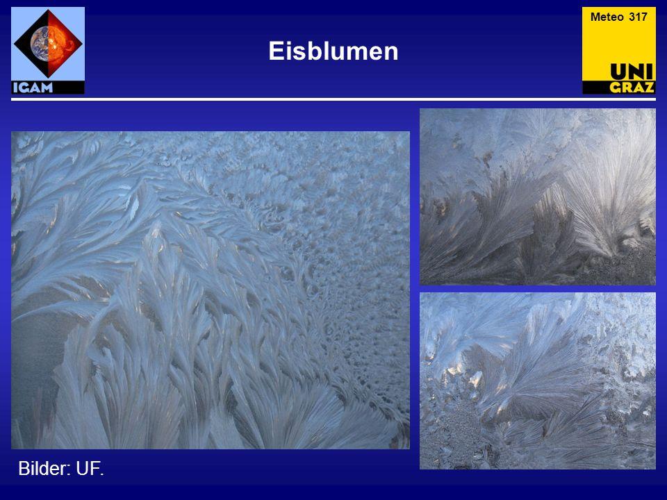Meteo 317 Eisblumen Bilder: UF.