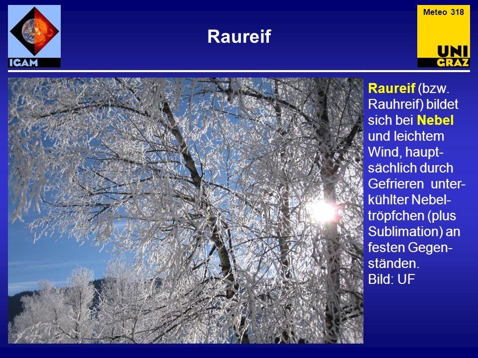 Meteo 318 Raureif.