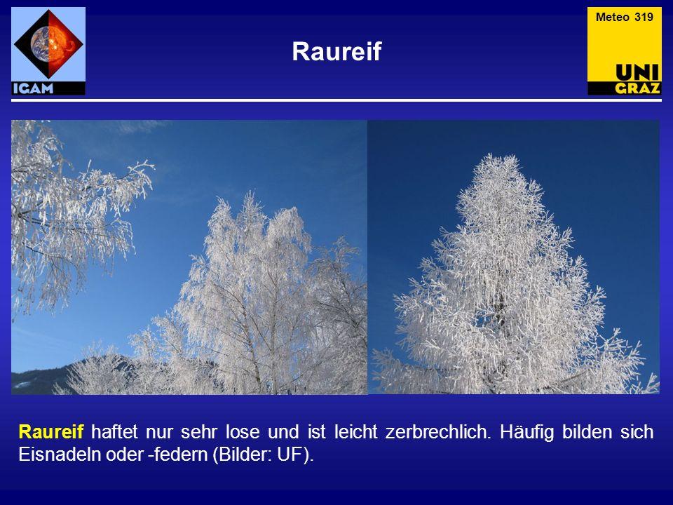 Meteo 319 Raureif. Raureif haftet nur sehr lose und ist leicht zerbrechlich.