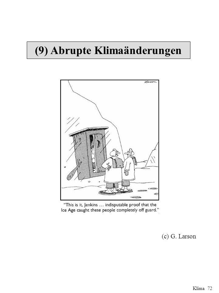 (9) Abrupte Klimaänderungen