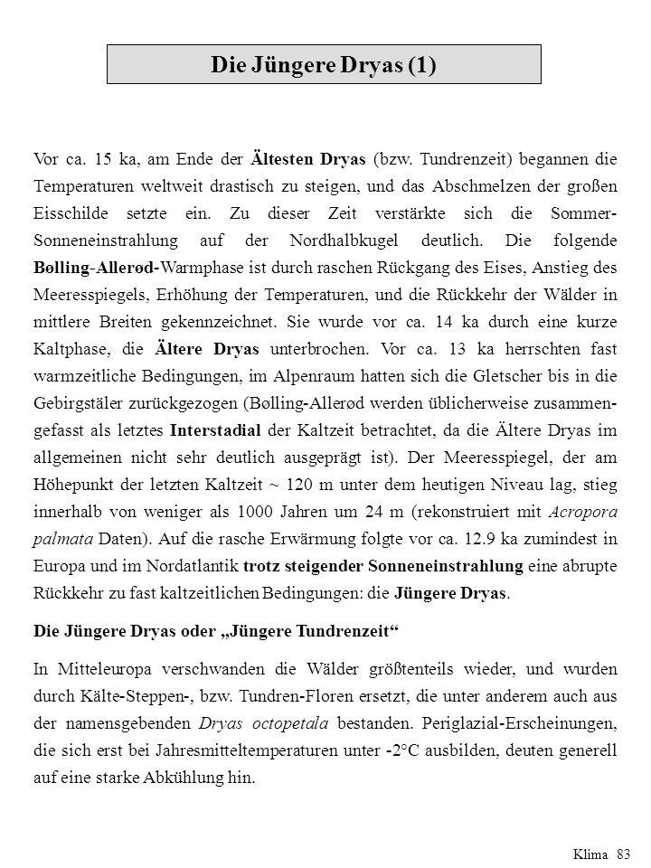 Die Jüngere Dryas (1)