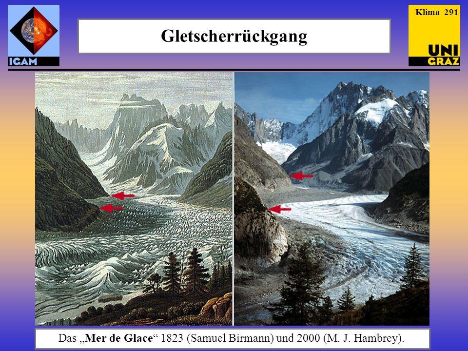 """Das """"Mer de Glace 1823 (Samuel Birmann) und 2000 (M. J. Hambrey)."""