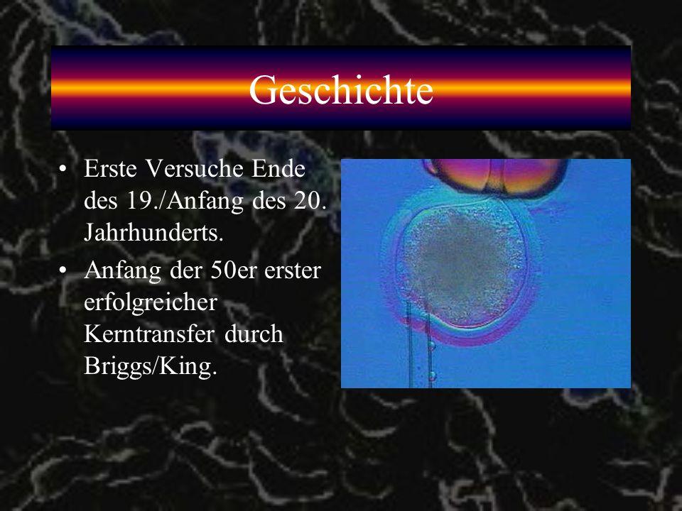 Geschichte Erste Versuche Ende des 19./Anfang des 20. Jahrhunderts.