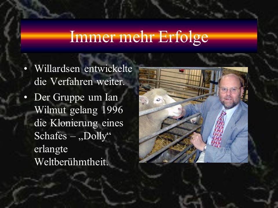 Immer mehr Erfolge Willardsen entwickelte die Verfahren weiter.