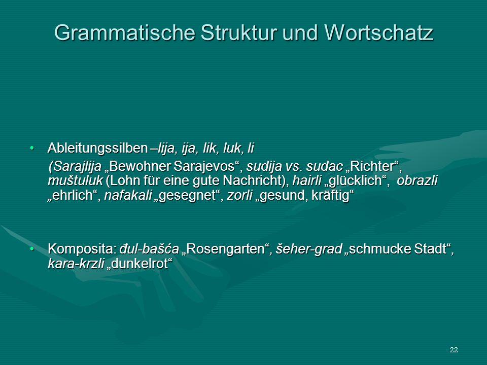 Grammatische Struktur und Wortschatz
