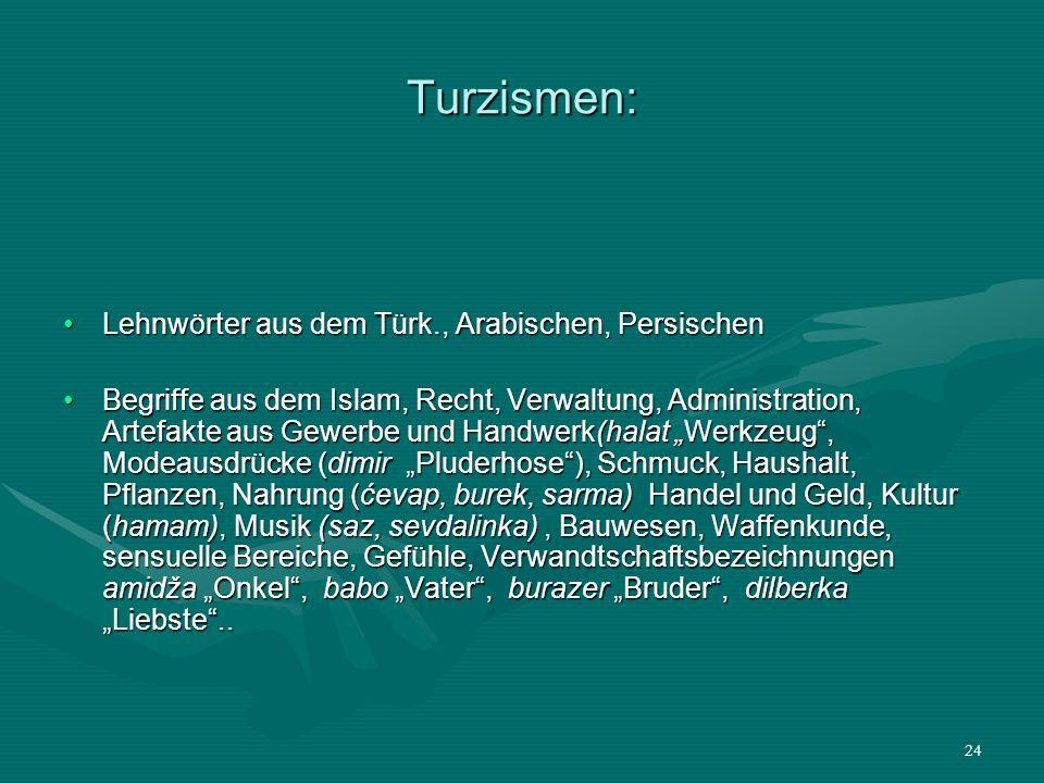 Turzismen: Lehnwörter aus dem Türk., Arabischen, Persischen