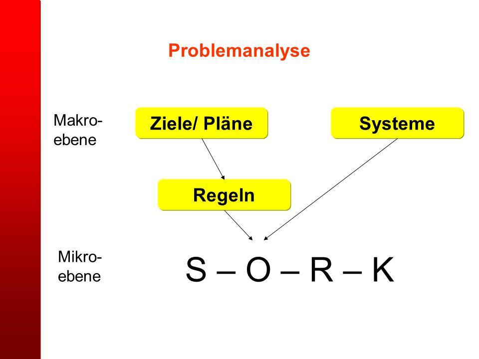 Problemanalyse Ziele/ Pläne Systeme Regeln
