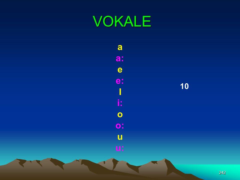 VOKALE a a: e e: I i: o o: u u: 10
