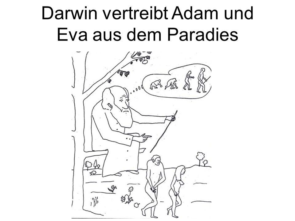 Darwin vertreibt Adam und Eva aus dem Paradies