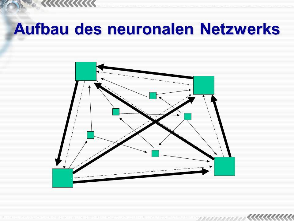 Aufbau des neuronalen Netzwerks