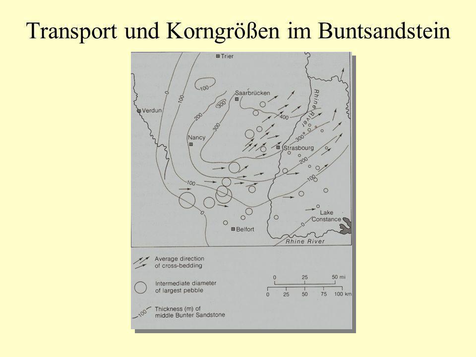 Transport und Korngrößen im Buntsandstein