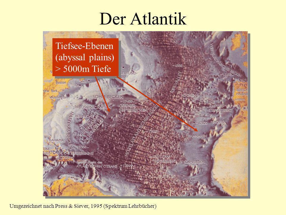 Der Atlantik Tiefsee-Ebenen (abyssal plains) > 5000m Tiefe
