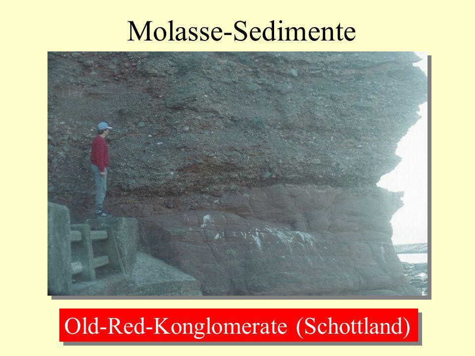 Molasse-Sedimente Old-Red-Konglomerate (Schottland)