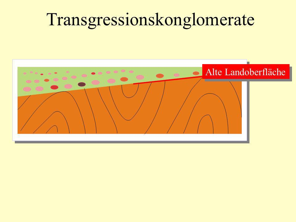 Transgressionskonglomerate