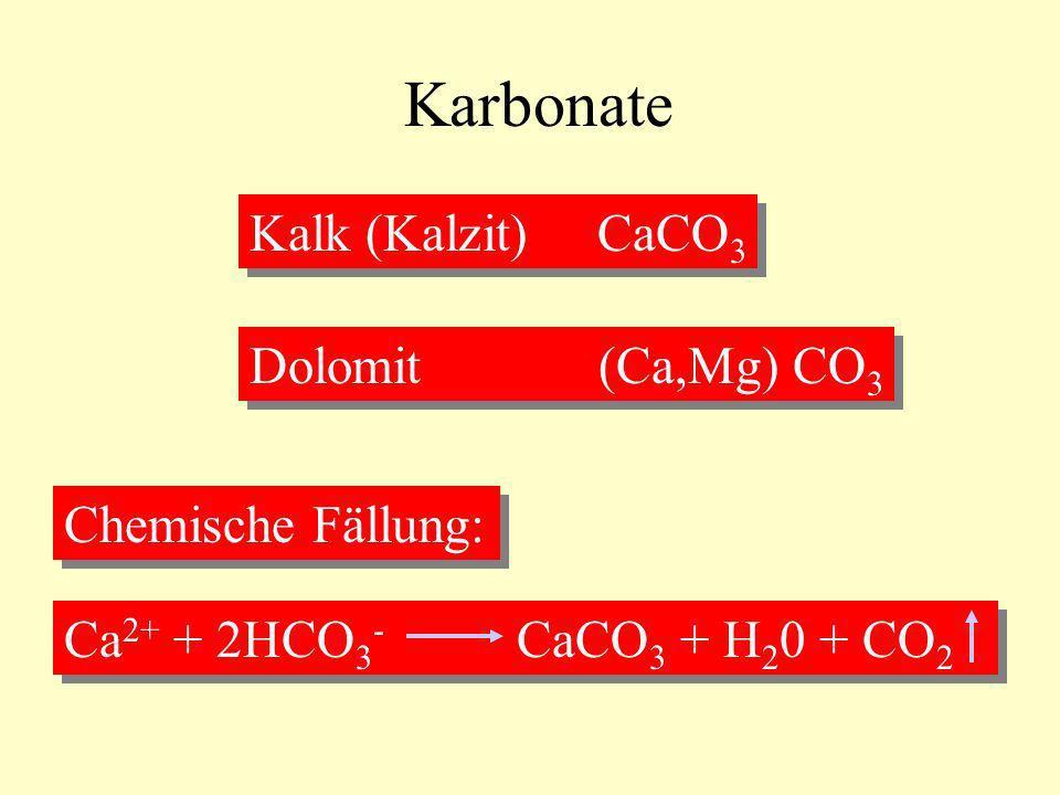 Karbonate Kalk (Kalzit) CaCO3 Dolomit (Ca,Mg) CO3 Chemische Fällung: