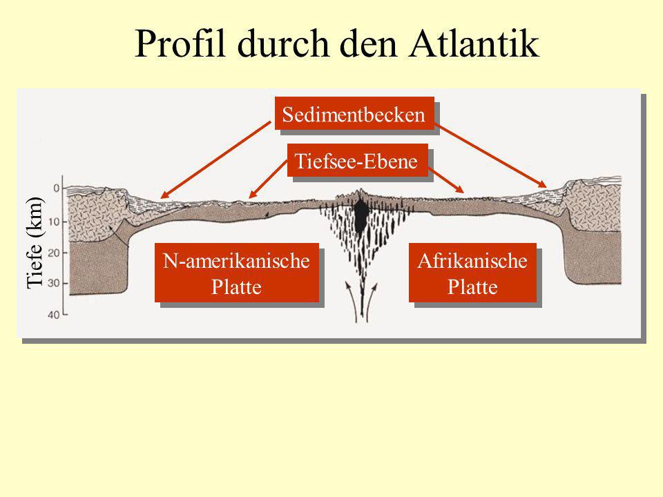 Profil durch den Atlantik